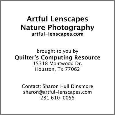 Artful Lenscapes Nature Photography contact information